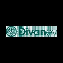 DIVANEV